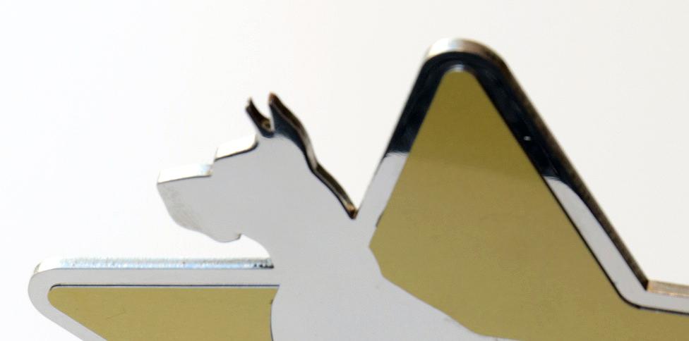 detalle-trofeo-concurso-canino-letramark