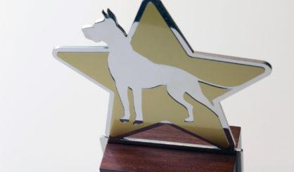 trofeos-letramark